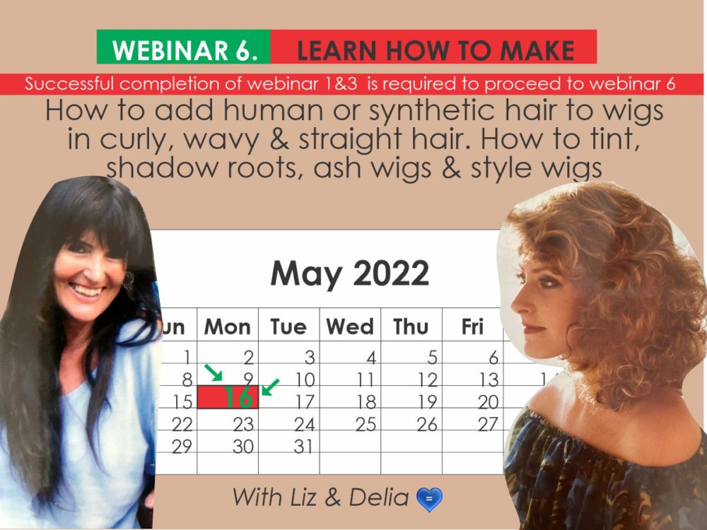 Webinar 6 - Add Human or Synthetic Hair to Wigs & Tint, Shadow Roots